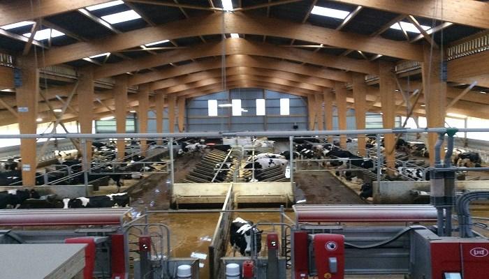 Le Book des bâtiments vaches laitières
