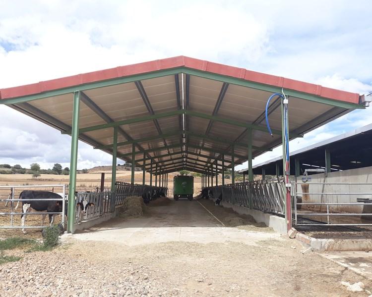 Explotación vacuno de leche | Agrotherm + Rústico Arcilla